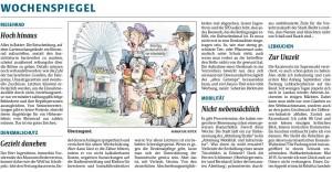 Rheinpfalz Kommentar zum Denkmalschutz in Landau vom 6.9.2014